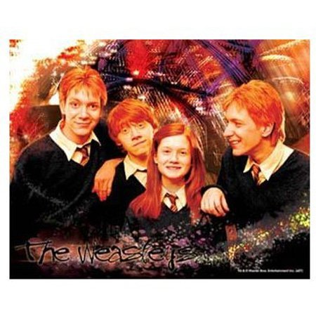 Visual Echo 3D Effect Harry Potter The Weasleys 100pc Lenticular